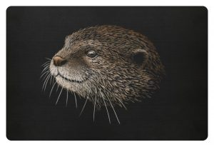 Otter Bleistift Zeichnung Kritzel-Kunst - Fußmatte-16