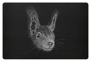 Eichhörnchen Bleistift Illustration - Fußmatte-16