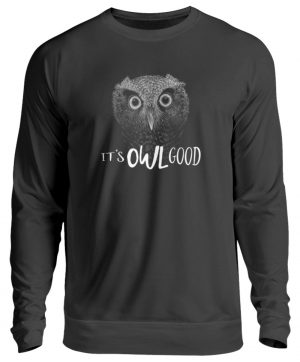 It-s OWL Good | Kritzel-Kunst-Eule - Unisex Pullover-1624